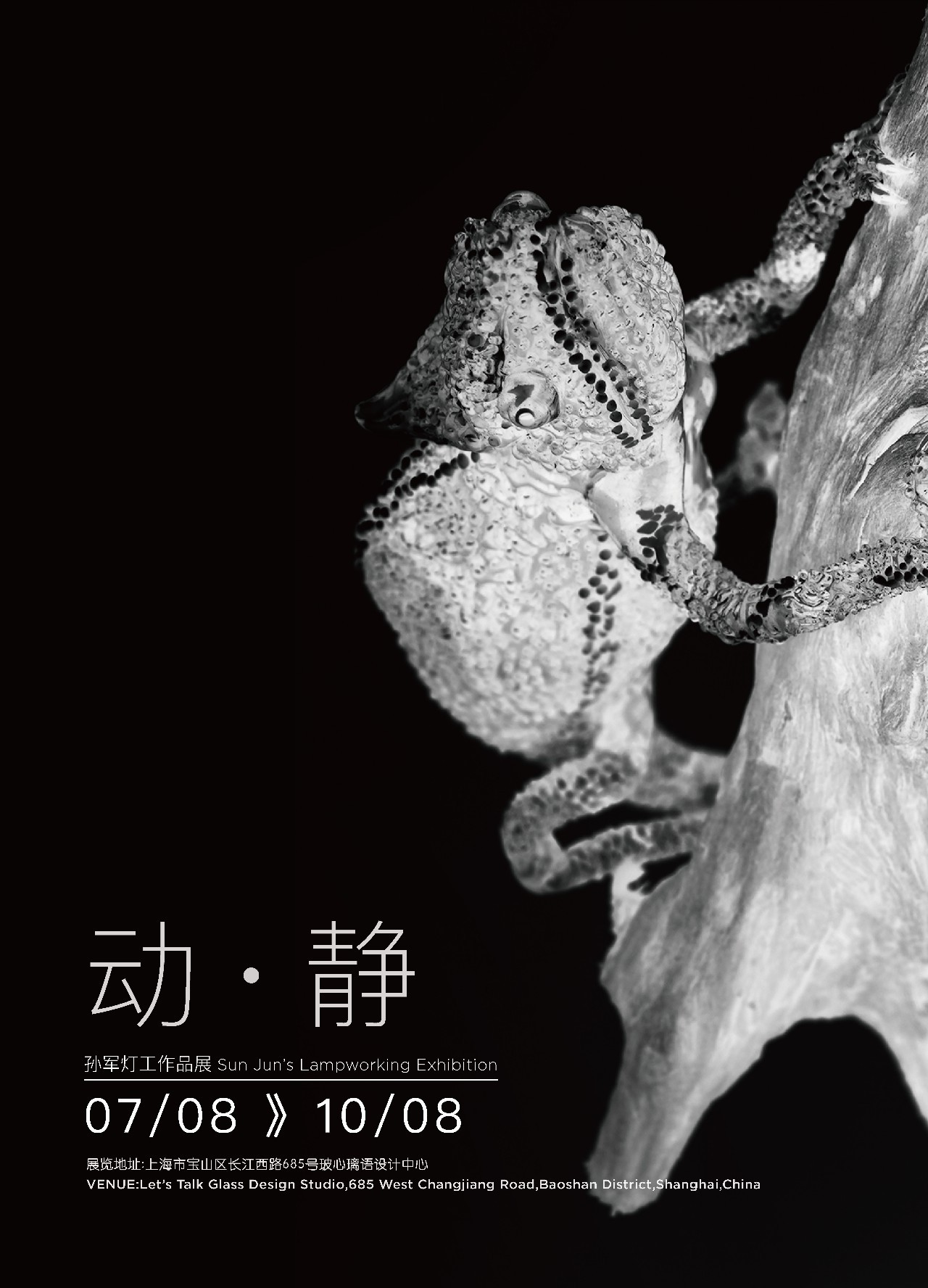 动·静:孙军灯工作品展