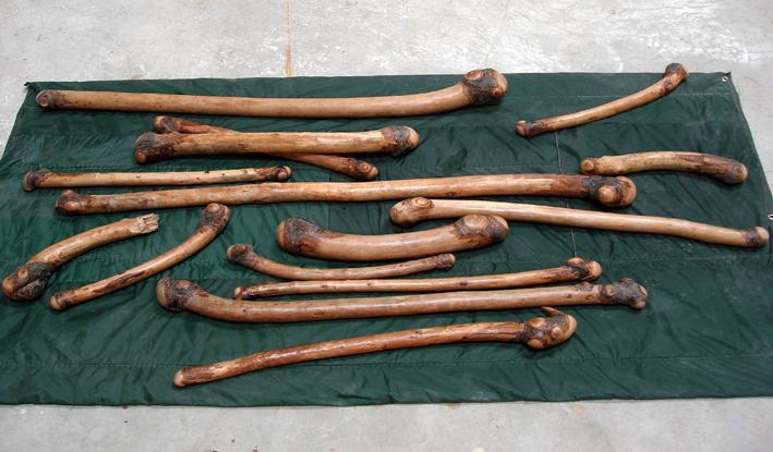 杨心广 棍子 2008 桃木、褥子 Sticks 2008 Peach wood、Mattress 200×150㎝